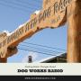 Artwork for Mushing Radio: Changes Ahead