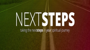 Next Steps Part 1 05/08/16