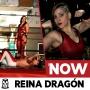 Artwork for NOW 006: Reina Dragón