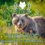 Artwork for The Science That Shows Government  Wildlife Management Is Unscientific (520)