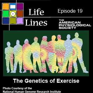 Episode 19: The Genetics of Exercise