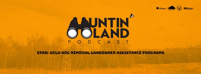 Wild Hogs | 28 | Huntin Land