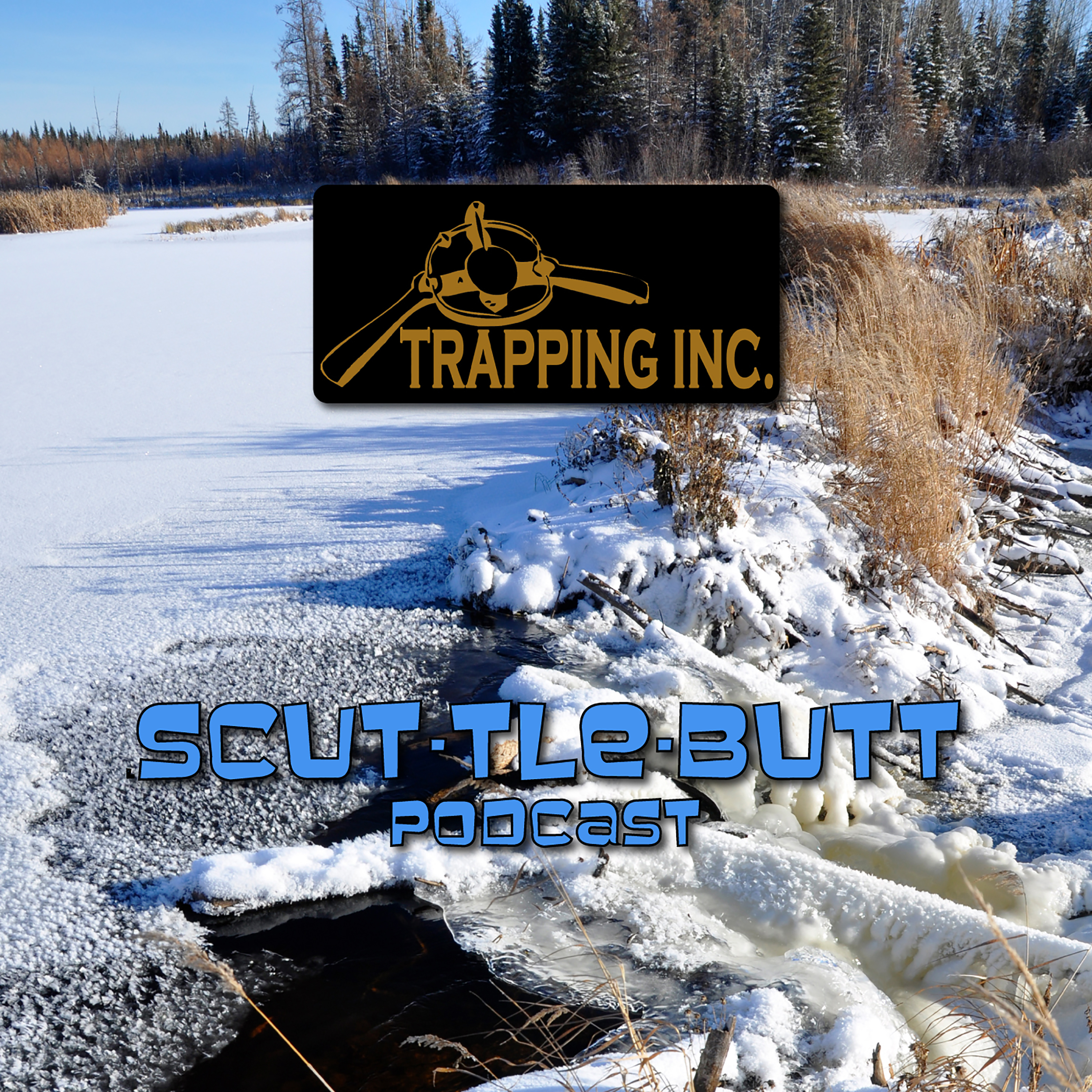Artwork for Bill Davis Ontario Trapper