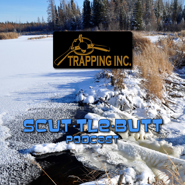 Scuttlebutt 75 Lindsey Patterson Alberta Prairie Coyote Trapper show art