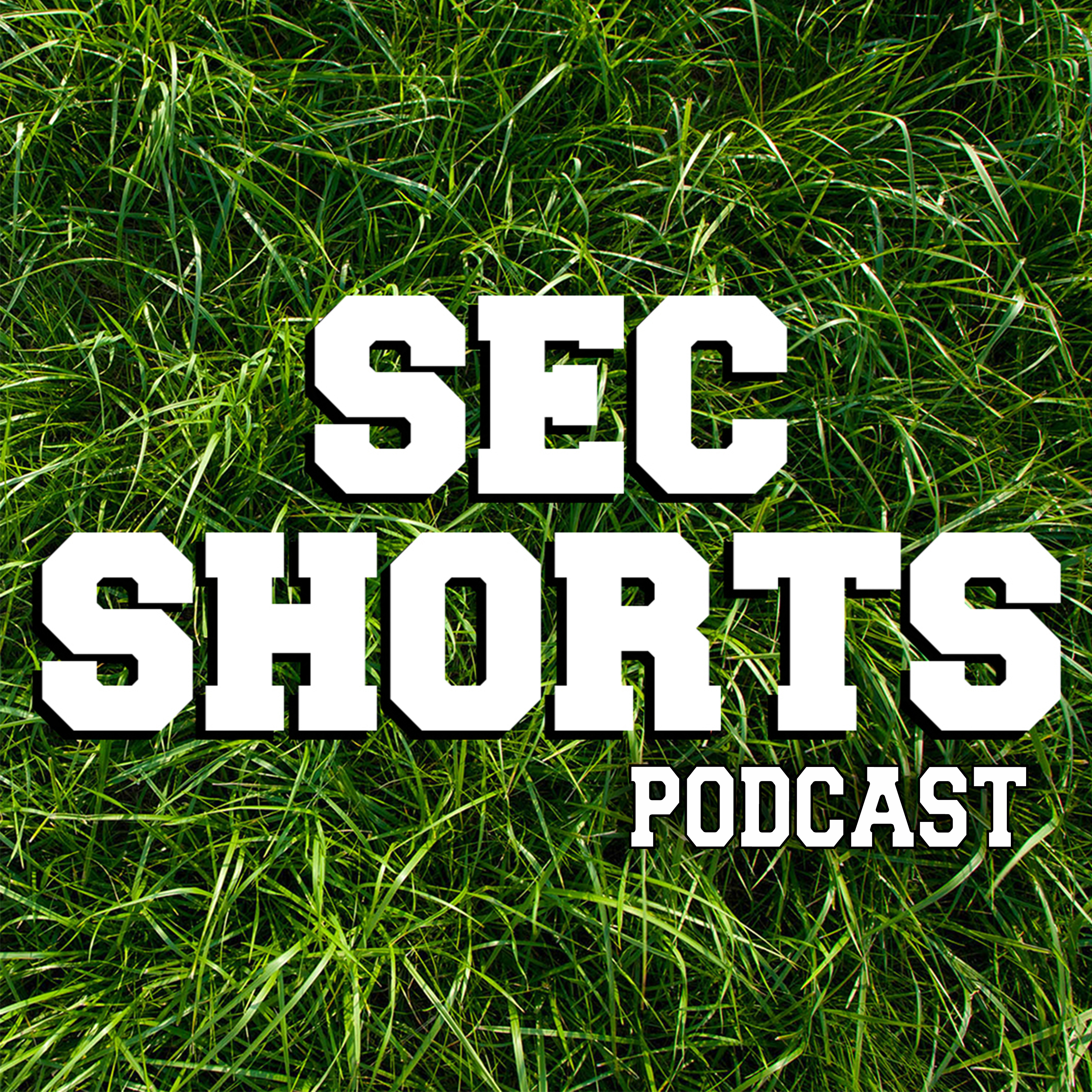 SEC SHORTS podcast show image