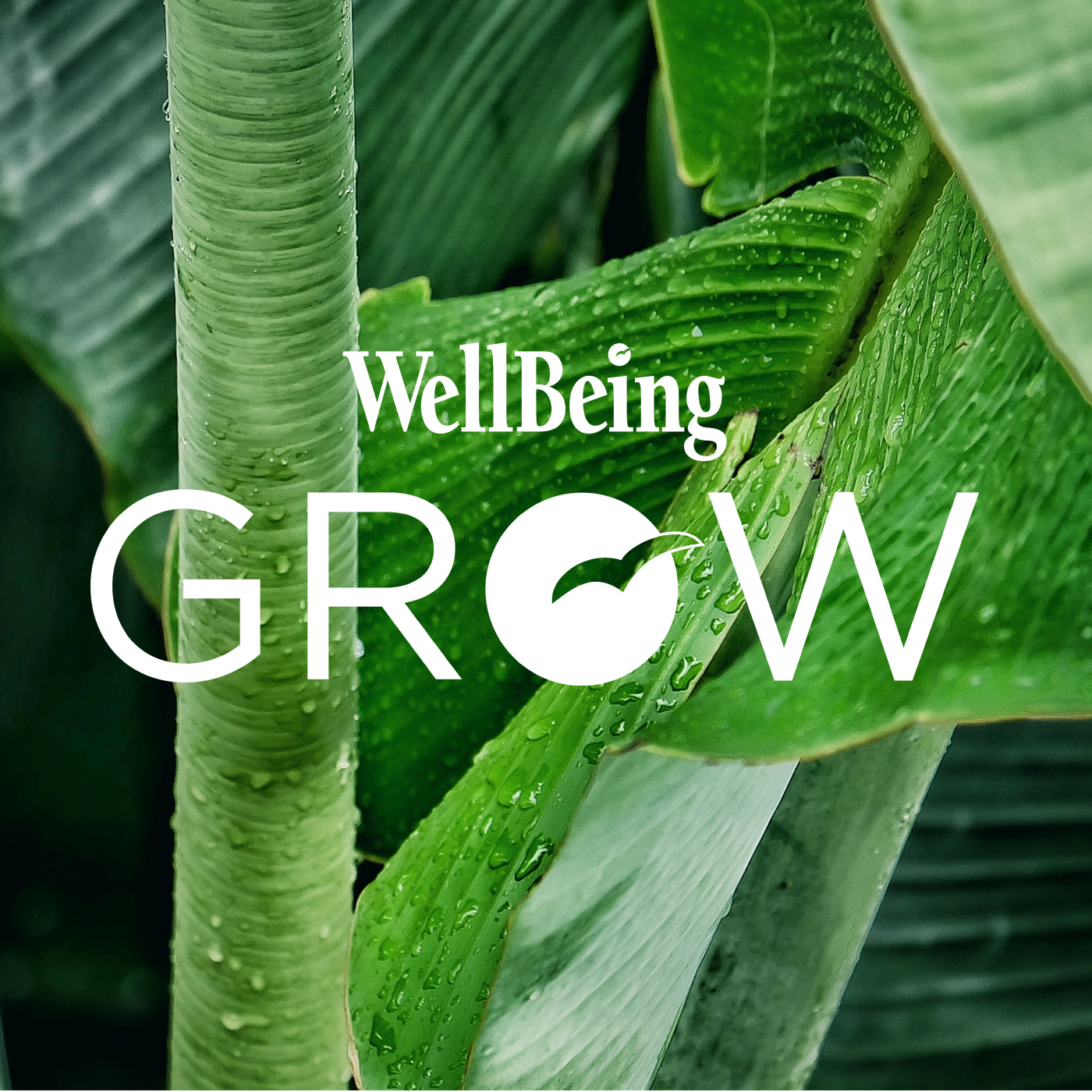 Wellbeing GROW podcast series show art