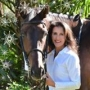 Artwork for 313: Lisa El-Ramey - Equestrian Tour Vacations, A Unique Niche Within The Horse Industry