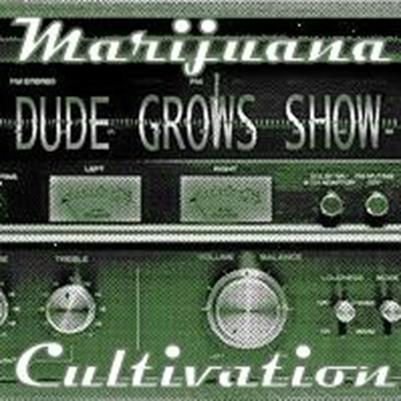 Artwork for Dude Grows Show Episode #93 Growing Marijuana