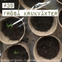 Artwork for 39. Fröså krukväxter