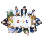 Artwork for Setting the Record Straight about DISC