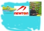 Artwork for 169 - Newton Running and Founder Jerry Lee