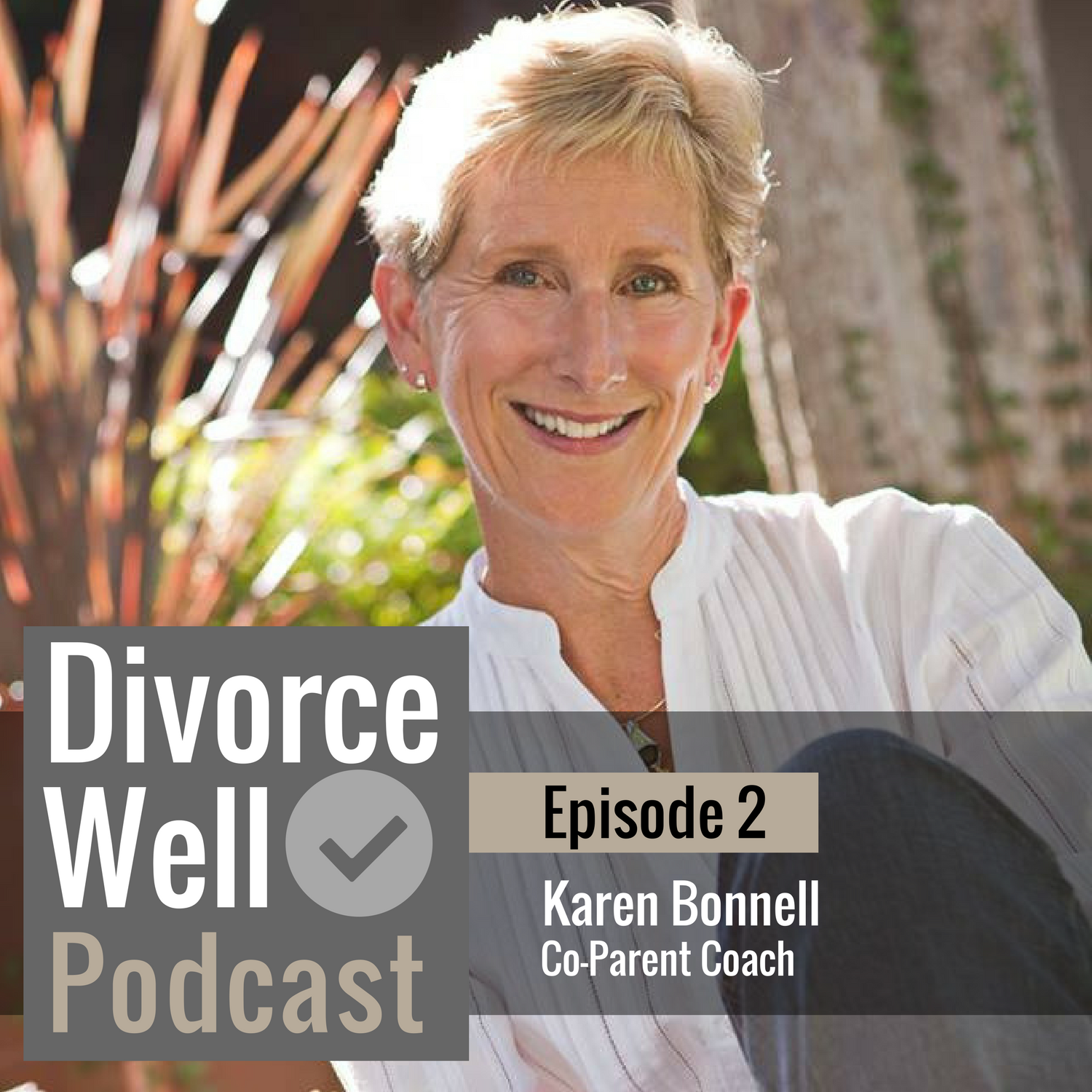 The Divorce Well Podcast - 02 - Co-Parenting Strategies to Help Your Kids Thrive, with Karen Bonnell