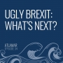 Artwork for Ugly Brexit: What's Next? [Episode 34]