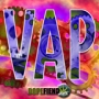 Artwork for VAP009
