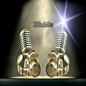 2BlindMics