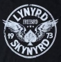 Artwork for Lynryd Skynryd - Free Bird  (rare version) Time Warp Song of The Day