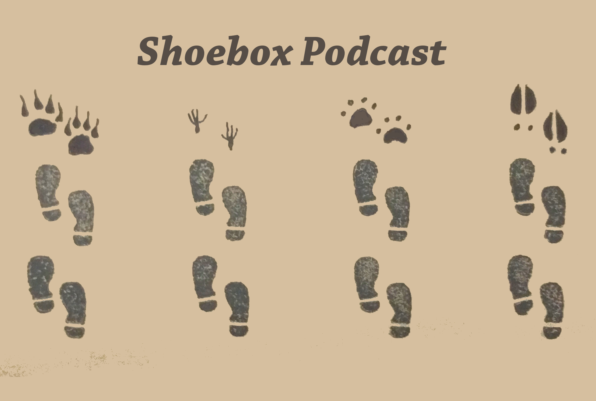 Artwork for Shoebox Podcast teaser