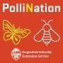 Artwork for 04 Dr. David Lowenstein - Wild Pollinators in Urban Areas