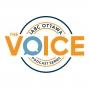 Artwork for The Voice Episode 65: Social Media and Healthcare with Ann Fuller & Daniela Crivianu-Gaita