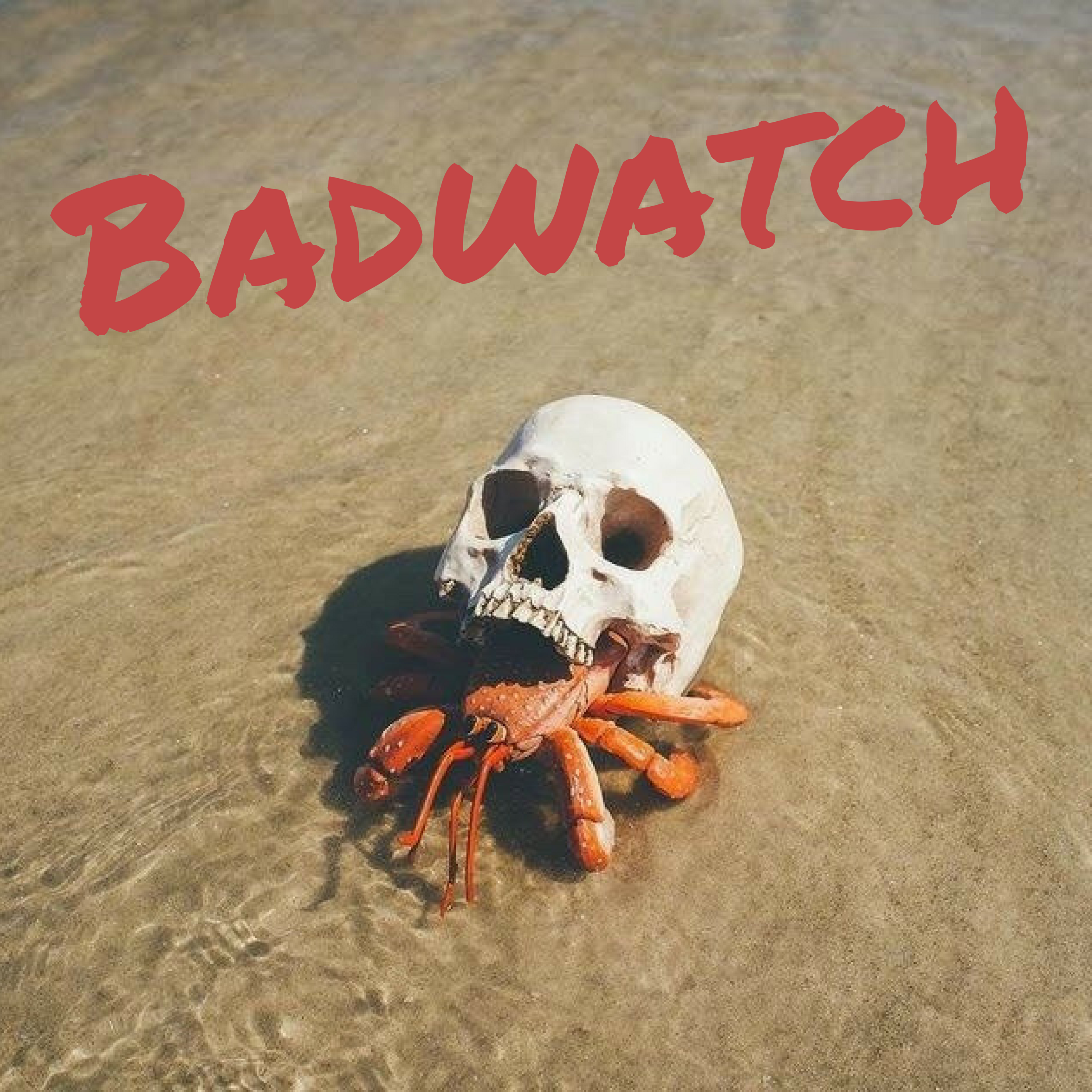 Artwork for This is Badwatch!