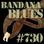 Artwork for Bandana Blues #730 - Eclectooth Music