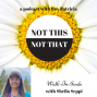 Artwork for Not This Not That - Walk-In Souls with Sheila Seppi