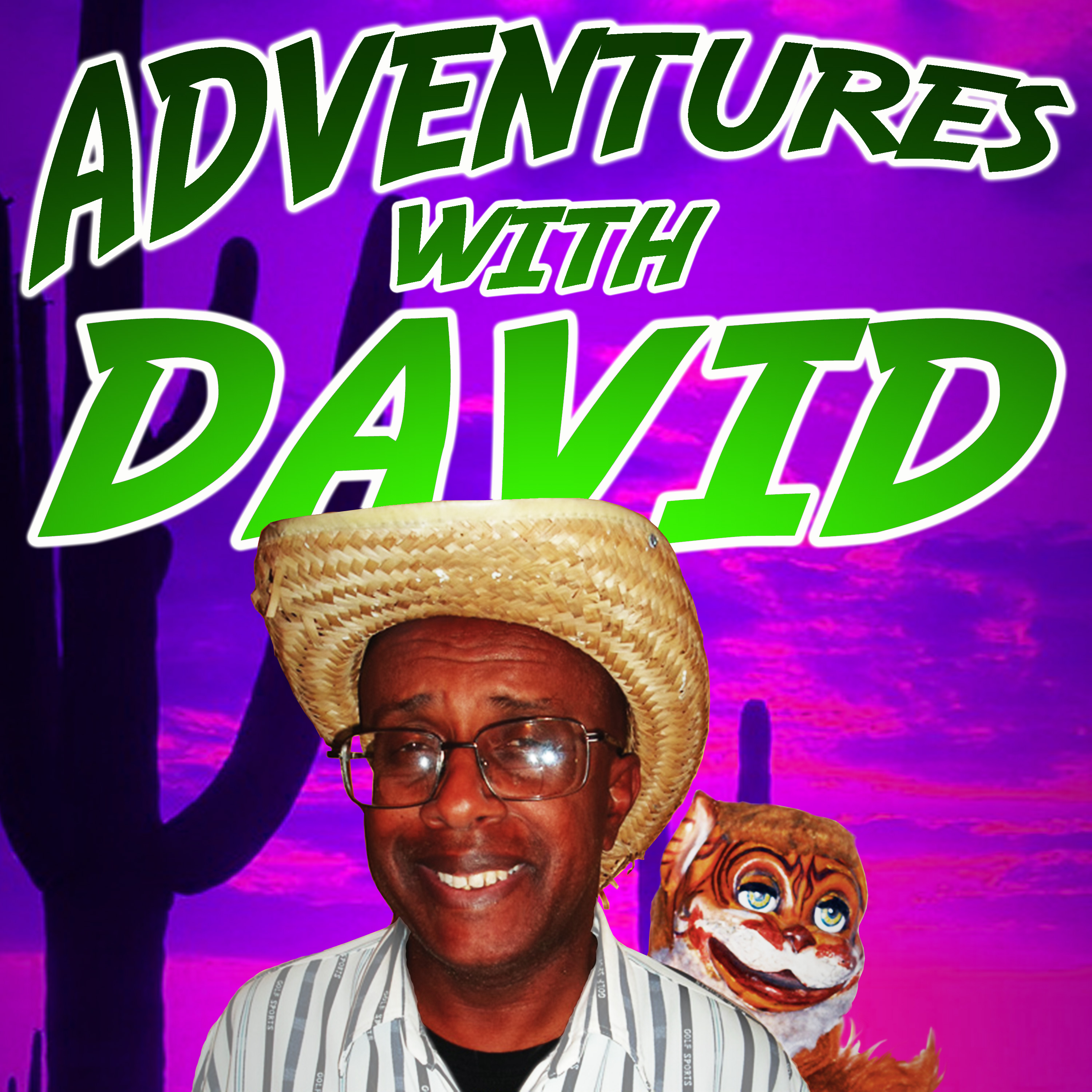 Adventures With David show image
