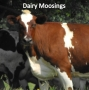 Artwork for Growing Dairies are Healthy Dairies in More Ways than just Financially
