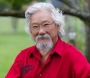 Artwork for David Suzuki on why indigenous knowledge is critical for humanity's survival