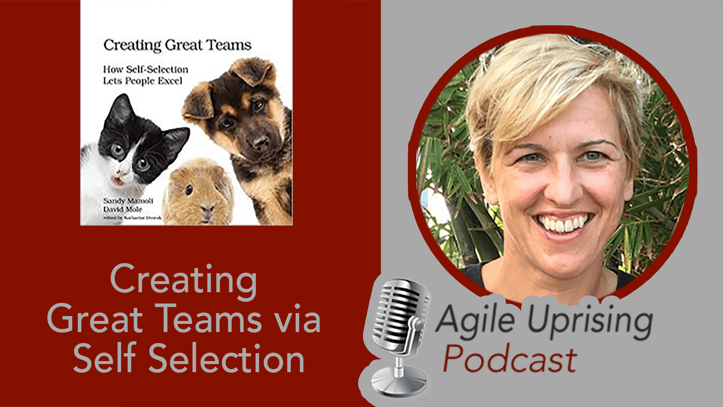 Create Great Teams via Self Selection