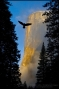 Artwork for Meet Fine Art Photographer Gary Crabbe