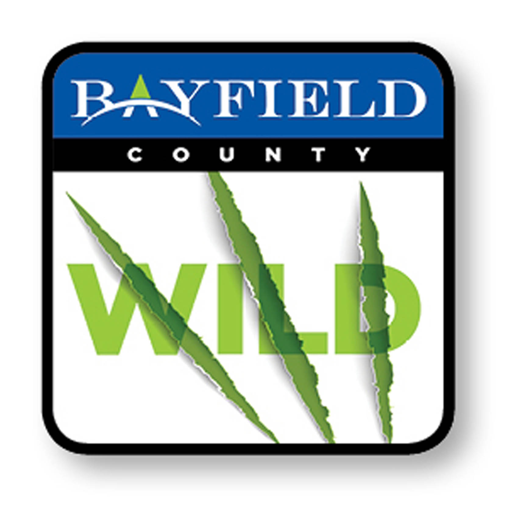 Artwork for Episode 18: Bayfield County Wild Talks with Dede Eckels of Eckels Pottery and Fine Craft Gallery