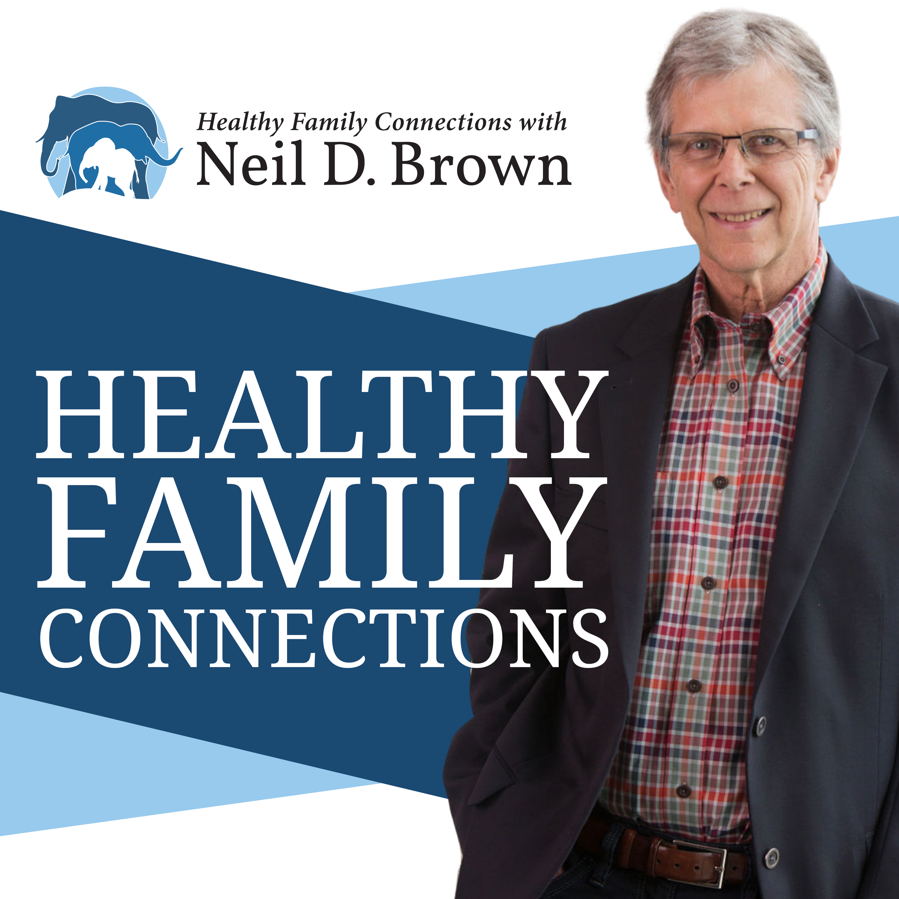 HEALTHY FAMILY CONNECTIONS show art