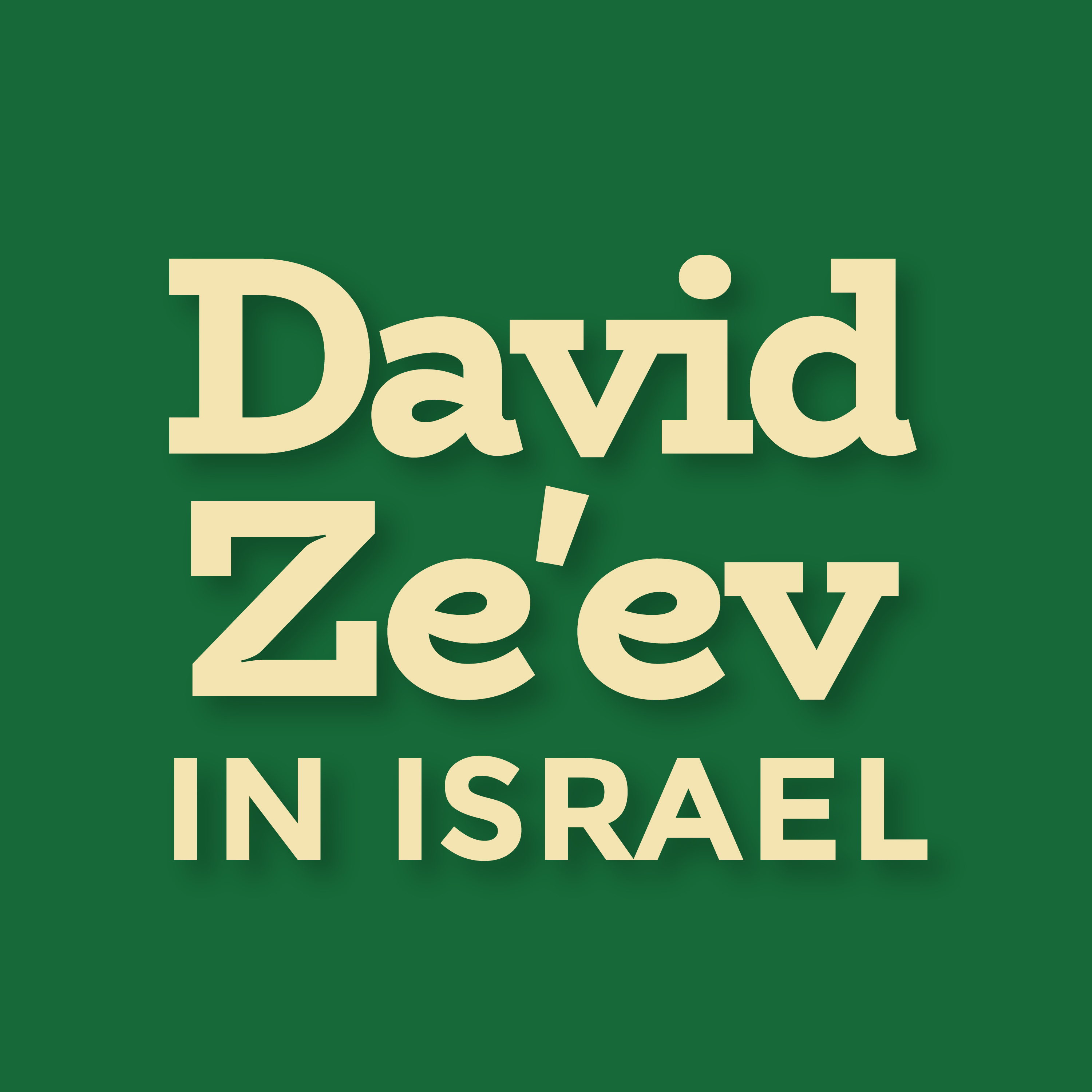 David Ze'ev in Israel: Interviews With Israel's Leading Newsmakers and Politicians show art