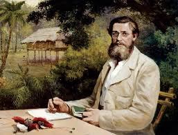 Alfred Russel Wallace and the Prehistory of the Indo-Malaysian Archipelago