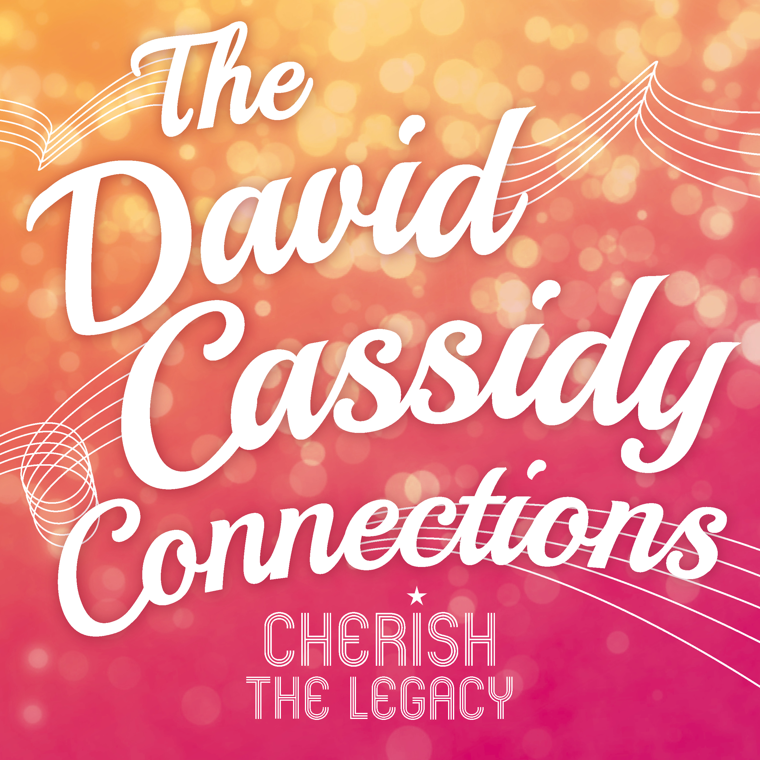The David Cassidy Connections