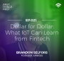 Artwork for Episode 21: Dollar for Dollar - What IoT can learn from Fintech