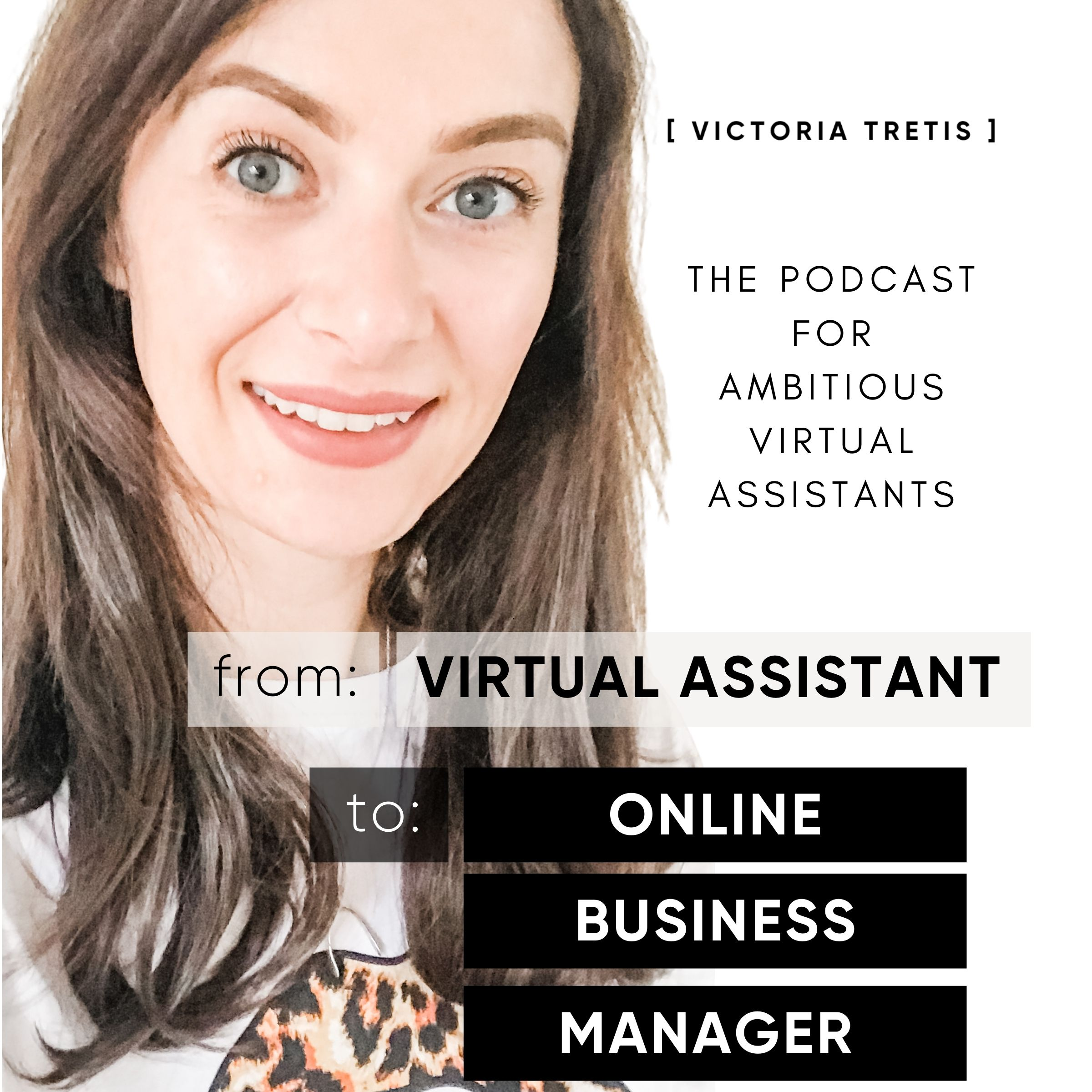 From Virtual Assistant to Online Business Manager show art