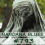 Artwork for Bandana Blues #793 - Again, We Lost Some...