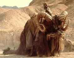 Star Wars Bantha Trax Episode 1: THE FANDOM REMINISCES!