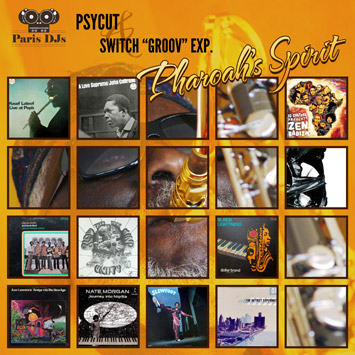 "Psycut & Switch ""Groov"" Exp. - Pharoah's Spirit"