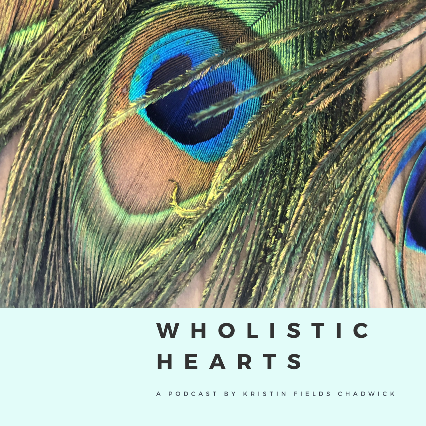Artwork for Wholistic Hearts Introduction