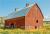Do you really need a bigger barn? show art