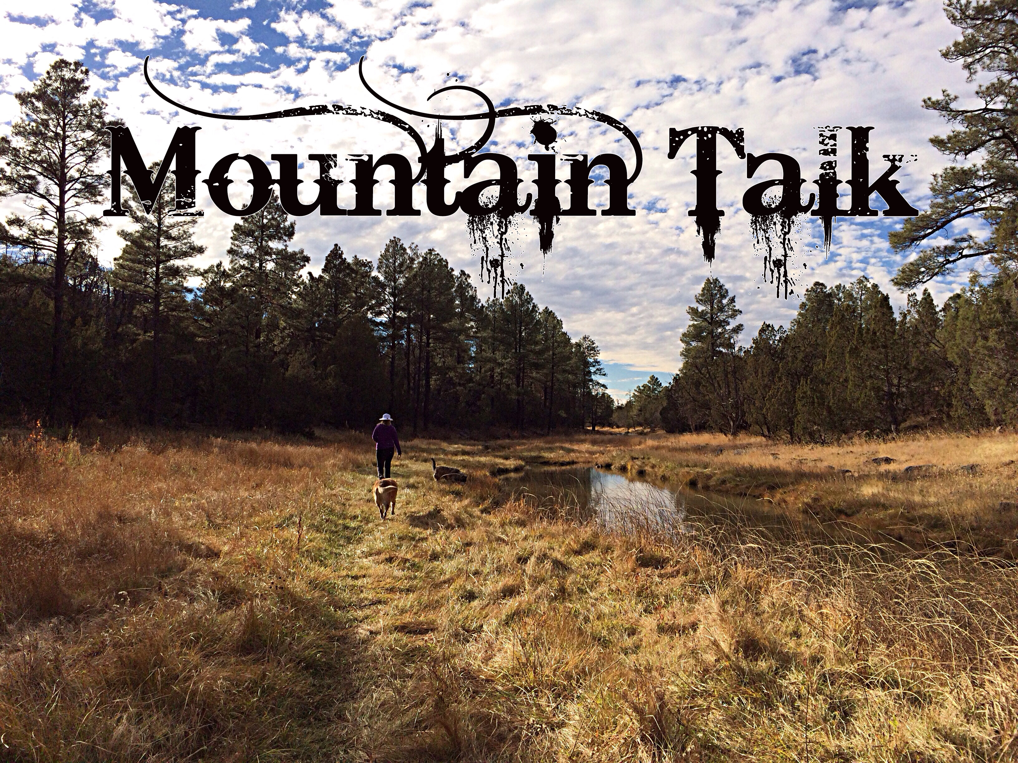 Artwork for 9-26-16 Mountain Talk - Events List