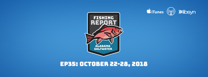 Alabama Saltwater Fishing Report | Ep35 | Oct22-28 | 2018