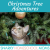 Episode 13 - Christmas Tree Adventures show art