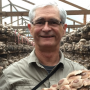 Artwork for 65: The real scoop on mushroom supplements with Jeff Chilton