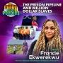 Artwork for The Prison Pipeline and Million Dollar Slaves