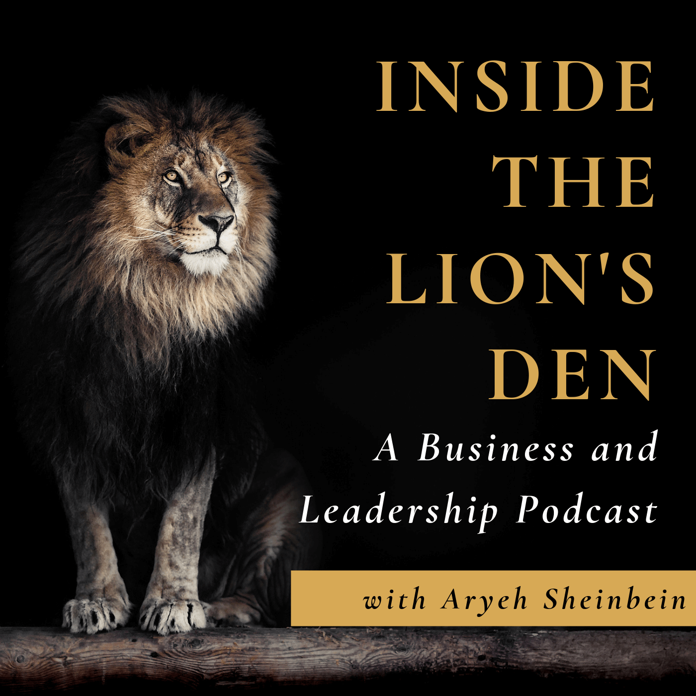Inside the Lion's Den: A Business and Leadership Podcast show art
