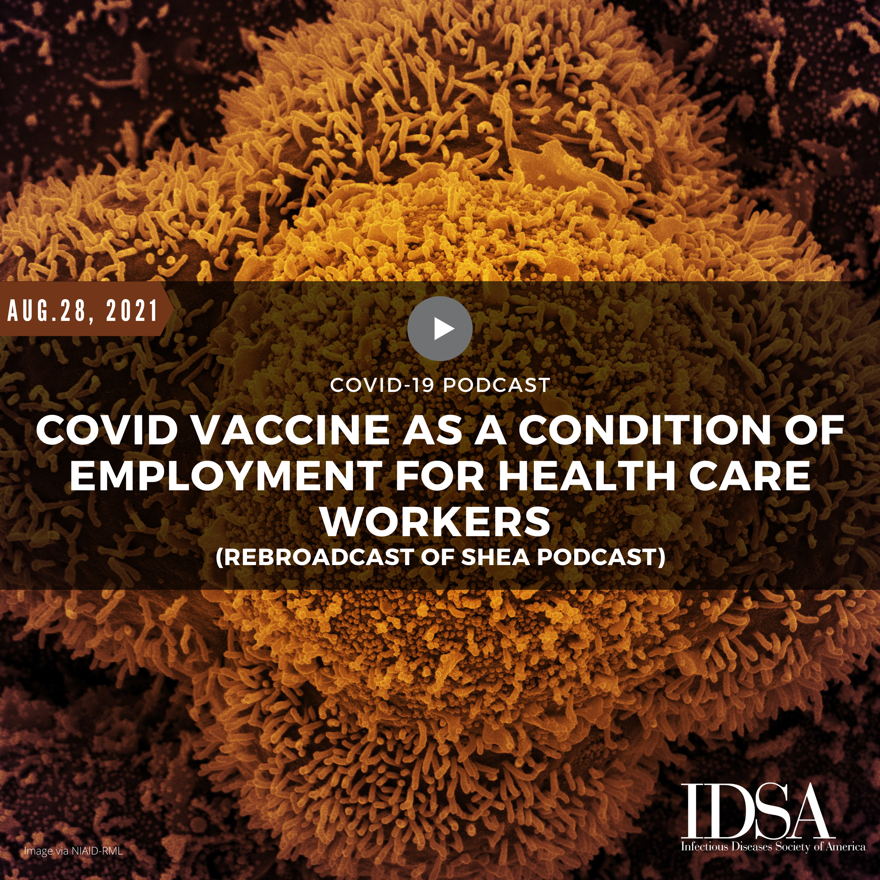 COVID Vaccine as a Condition of Employment for Health Care Workers (Rebroadcast of SHEA Podcast)